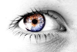 agnis_eye.jpg